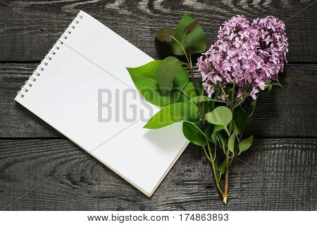 Medicinal plant lilac (Syringa) and notebook to write recipes and methods of application. Used in herbal medicine and for preparation of cosmetics and perfumery