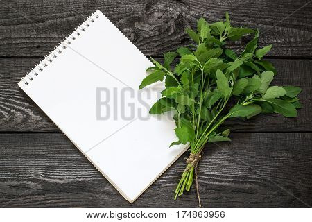 Medicinal plant Atriplex (saltbush orache) and notebook to write recipes and methods of application. Used in herbal medicine cooking food for animals to prevent soil erosion