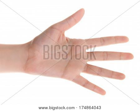 Stretched Hand Of Woman Isolated Over White Background. Open Palm Hand Gesture Of Woman Hand. Close