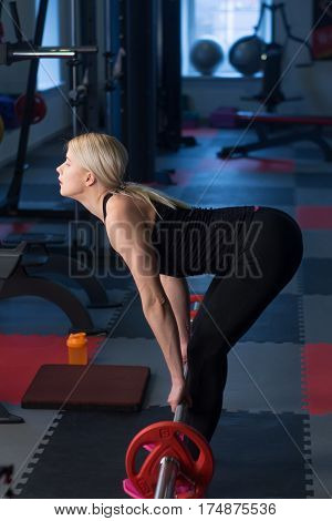 Sexy Woman Flexing Muscles With Barbell In Gym