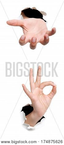 Female Hand Showing Thumb Up Ok All Right Victory Hand Sign Gesture. Gestures And Signs. Body Langua