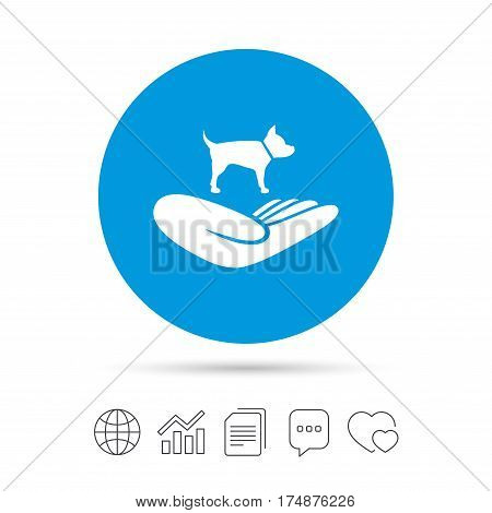 Shelter pets sign icon. Hand holds dog symbol. Animal protection. Copy files, chat speech bubble and chart web icons. Vector