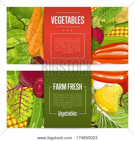 Fresh farm food banners vector illustration. Natural vegetable, organic farming retail, vegan product store poster. Healthy farm food advertising with potato, corn, cabbage, tomato, radish, pepper