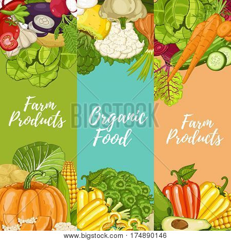 Organic farm food flyers set vector illustration. Locally grown vegetable, natural farming, natural product. Healthy farm food advertising with pumpkin, beans, onion, peas, tomato, radish, carrot