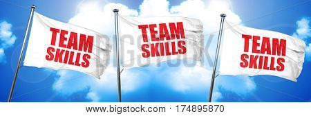 team skills, 3D rendering, triple flags
