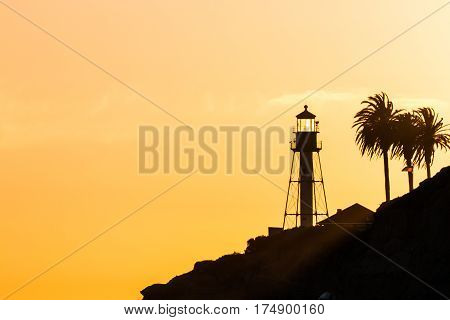 Sunset at the new Point Loma lighthouse with palm trees in San Diego, California.