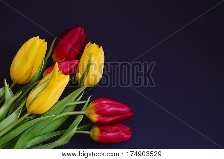 Fresh spring red and yellow tulip bouquet flowers close up macro isolated in the lower left corner on black background top view with copy space