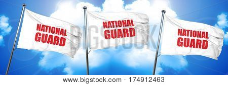 national guard, 3D rendering, triple flags