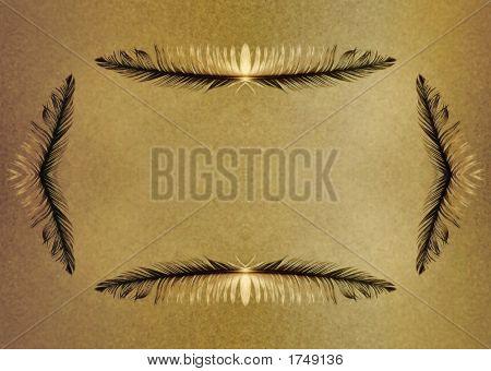Grunge Feather Border Parchment Background