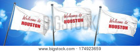 Welcome to houston, 3D rendering, triple flags