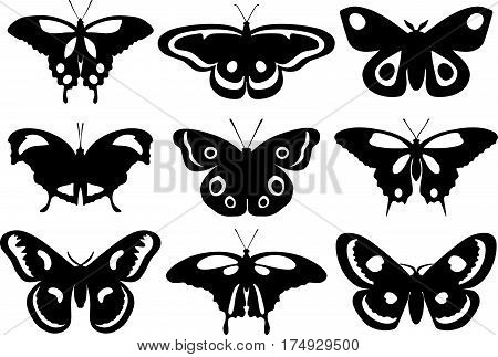 Detailed illustration different silhouettes butterflies isolated in flat style on white background. Collection of butterflies.