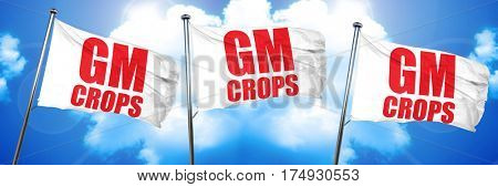 gm crops, 3D rendering, triple flags