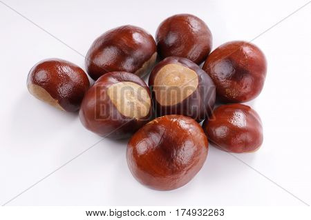 top view of chestnuts or conkers on white background