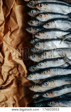 The Concept Of Fresh, Healthy Seafood. Top View