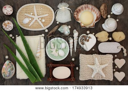 Natural spa and skincare beauty products with aloe vera, bathroom accessories including exfoliating scrubs, bath crystals and bombs, sponges, soaps, shells and pearls.