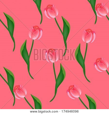 Seamless floral pattern with red and pink tulips on pink. Endless background for your design, romantic greeting cards, announcements, fabrics, warpping paper. Vector illustration