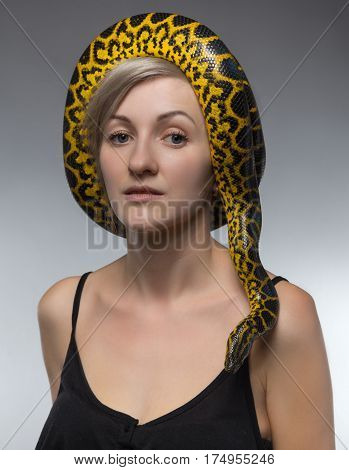 Woman and crawling anaconda on her head on gray background