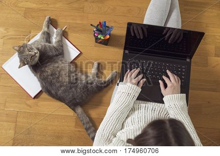 Top view of a woman working on her laptop at home with her cat as an assistant. Selective focus