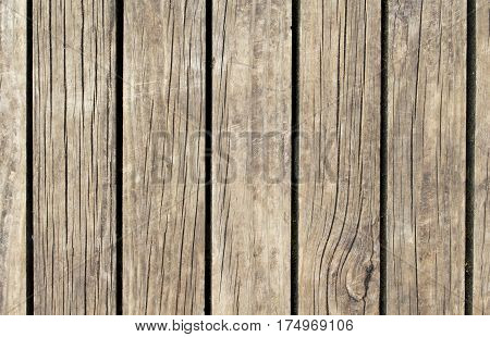 Brown wood texture with vertical lines. Warm brown wooden background for vintage banner. Timber texture ornament closeup. Wooden planks board or wall backdrop photo. Natural material table template