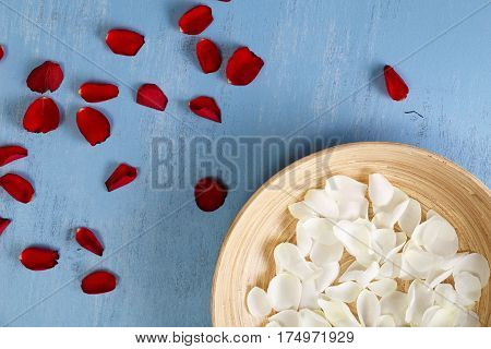 Petals of white and red roses on blue painted rustic background. Fresh natural flowers in bowl. Dirty grunge wooden board.