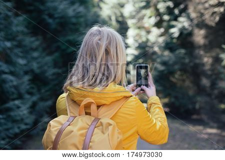Taking Pictures Using Mobile Phone. Mobile Photography. Tourist Taking Picture  Forest