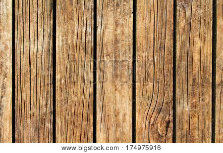 Warm wood texture with vertical lines. Yellow brown wooden background for natural banner. Timber texture closeup. Vertical wooden planks of floor backdrop photo. Natural material for banner template