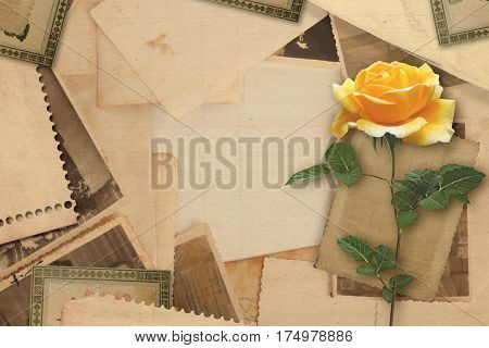 Old Vintage Archive With  Yellow Roses