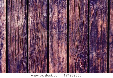 Color wood background. Brown wood texture with vertical lines. Wooden background for natural banner. Timber texture closeup. Vertical wooden planks of floor backdrop photo. Natural material for banner