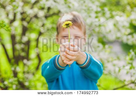 Closeup portrait of cute funny little boy isolated over green blooming trees background. Caucasian blonde child enjoying sunny warm weather in spring beautiful day. Springtime concept.