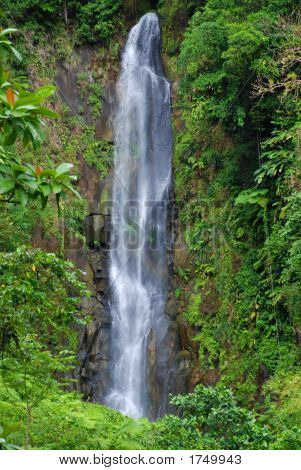 The Waterfalls Of Dominica