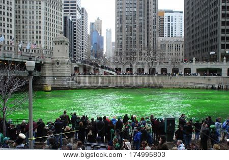 Green Chicago River Dying on Saint Patrick's Day March 15, 2008