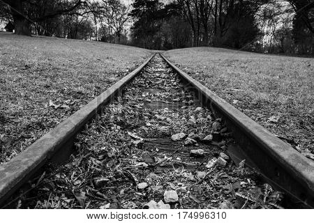 Rail Road Tracks Park Hills Landscape Forest Black White Monochrome Emotional Goal Travel Moving Perspective Closeup