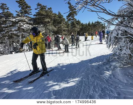 Stratton VT March 05 2017: A man in a yellow coat is skiing on a flat section of Stratton mountain.