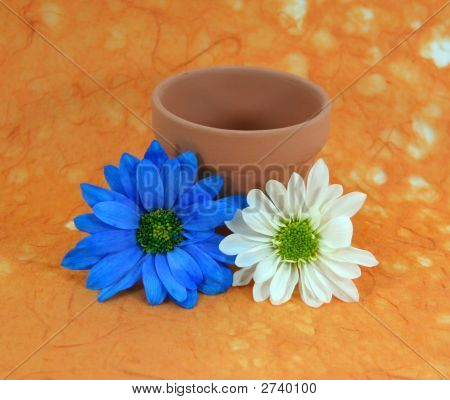 Blue And White Daisies And Flowerpot