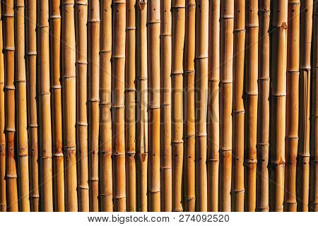 Dry Natural Bamboo Fence Panel Or Wall