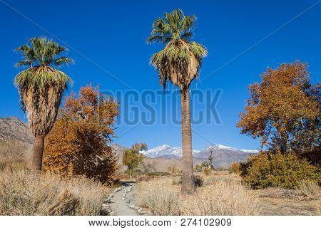 The Scenic Landscape Of The California Desert Near Palm Springs In Fall