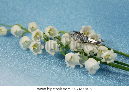 Elegant Jewelry And Lily Of The Valley