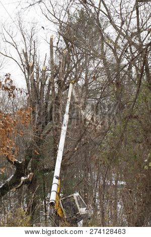 Sawdust flies as Duke Energy maintenance of way (MOW) crew trims fallen and dead trees along transmission line after Winter Storm Diego. poster