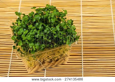 Cress Salad,in Some Regions, Garden Cress Is Known As Mustard And Cress, Garden Pepper Cress, Pepper