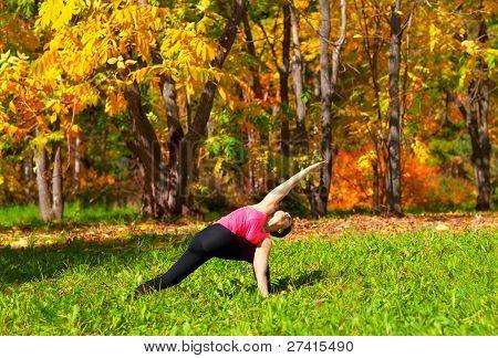 Yoga Parivrita Parshvakonasana Pose
