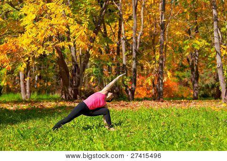 Yoga Utthita Parshvakonasana Pose