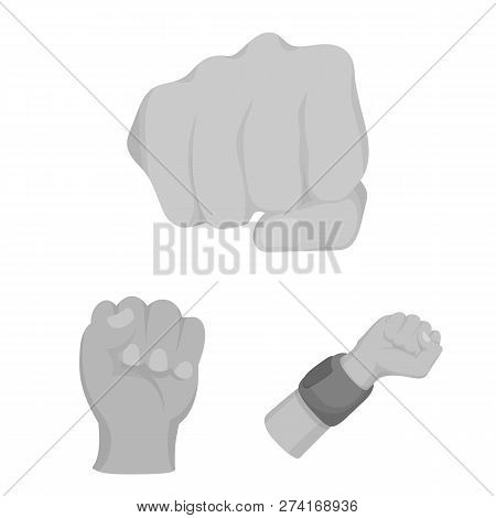 Vector Design Of Fist And Punch Sign. Collection Of Fist And Hand Stock Vector Illustration.