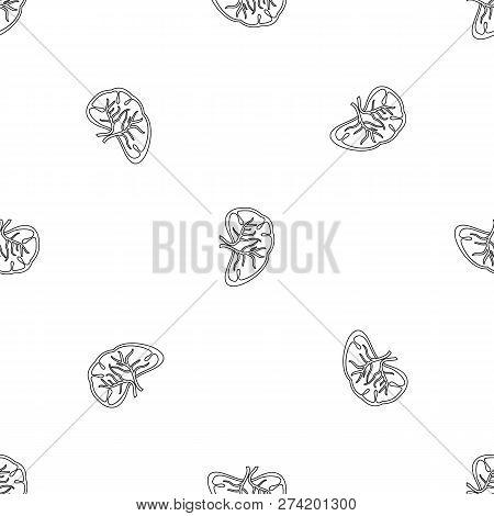 Cut Spleen Icon. Outline Illustration Of Cut Spleen Vector Icon For Web Design Isolated On White Bac