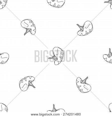 Human Spleen Icon. Outline Illustration Of Human Spleen Vector Icon For Web Design Isolated On White