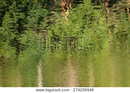 Abstract Background: Reflection Of The Forest In The Lake. Autumn Leaves Reflecting In A Pond. Water