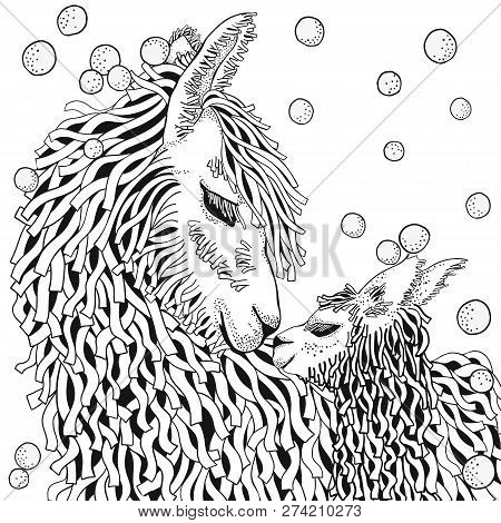 Llama. Mather And Baby. Coloring Book Page For Adult And Children In Doodle Style. Black And White B
