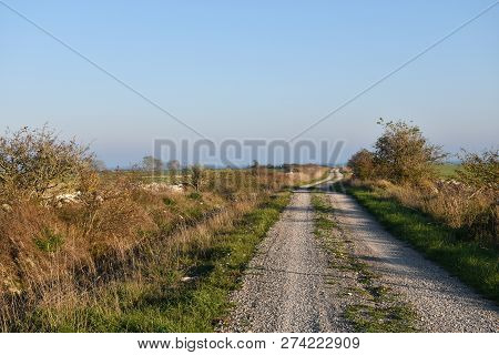 Winding Gravel Road In The Countryside At The Swedish Island Oland