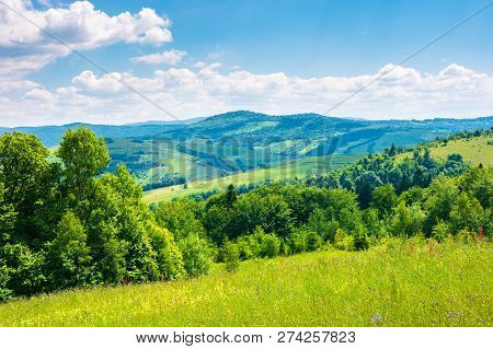 Beautiful Summer Landscape In Mountains. Grassy Meadow, Green Foliage, Blue Sky On A Sunny Warm Day