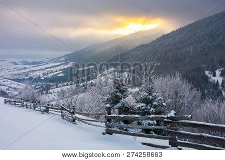 Wonderful Snowy Countryside In Mountains. Spruce Trees And Wooden Fence On The Edge Of A Slope. Wint