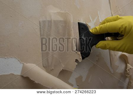 Cleaning Wall Old Image Photo Free Trial Bigstock